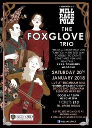 foxglove-A4-poster